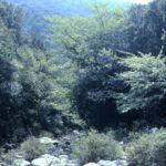 28 Sette  Fratelli lungo il rio Sa Ceraxa