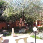 cortile-condominiale-antica-villa-oasi-ottocento-rid